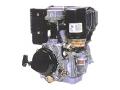 Двигатель Robin Subaru DY 41